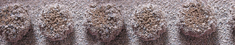 Bentonite cat litter best non clumping